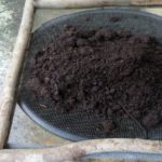 sifting, treating and packaging for sale